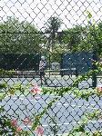 マッサージ師のテニス